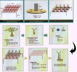 """Karet Konstuksi - Gada Bina Usaha 081233069330 - Teknologi Asap Cair """"Deorub"""" dalam Industri Karet Alam"""